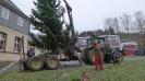 Weihnachtsbaumfest 2012JG_UPLOAD_IMAGENAME_SEPARATOR2